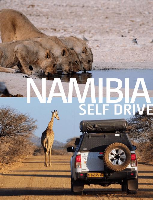 Namibia - wyprawa do Afryki
